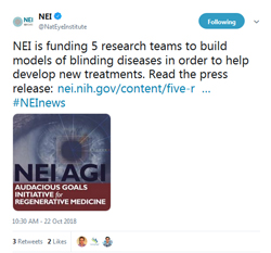 NEI Initiative Funds Projects to Accelerate the Development of